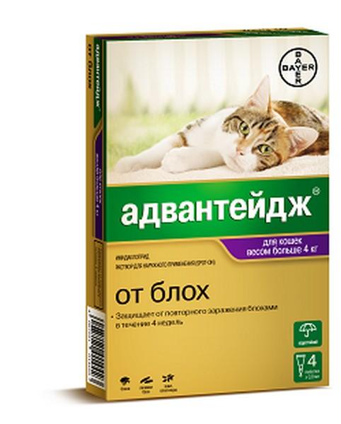 Bayer Адвантейдж 80К / Капли на холку от Блох для кошек весом более 4 кг
