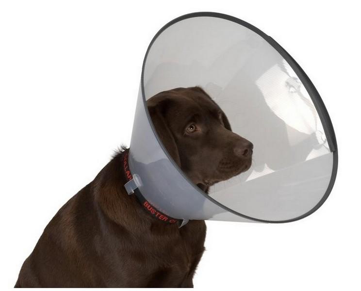 Kruuse защитный воротник для собак Комфорт