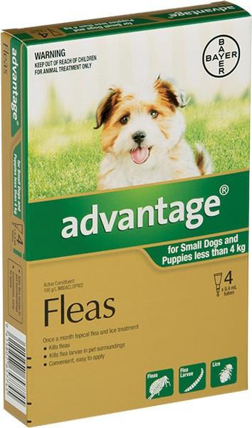 Bayer Адвантейдж / Капли на холку от Блох для собак весом до 4 кг