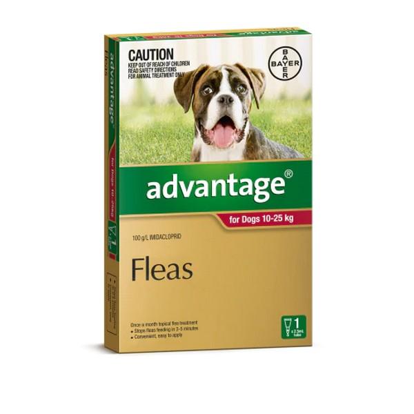 Bayer Адвантейдж / Капли на холку от Блох для собак весом от 10 до 25 кг