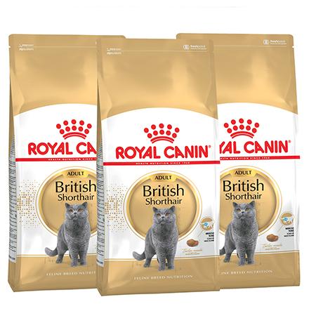 Royal Canin Breed cat British Shorthair / Сухой корм Роял Канин для Взрослых кошек породы Британская короткошерстная