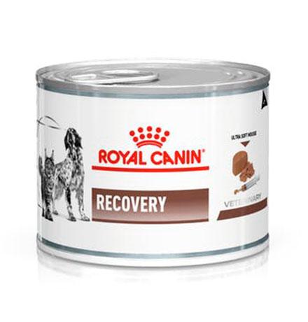 Royal Canin Recovery Canine / Ветеринарный влажный корм (Консервы) Роял Канин Рекавери для собак и кошек Анорексия Восстановление Кормление через зонд (Цена за упаковку)