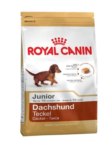 Royal Canin Breed dog Dachshund Junior / Сухой корм Роял Канин для Щенков породы Такса в возрасте от 2 до 10 месяцев