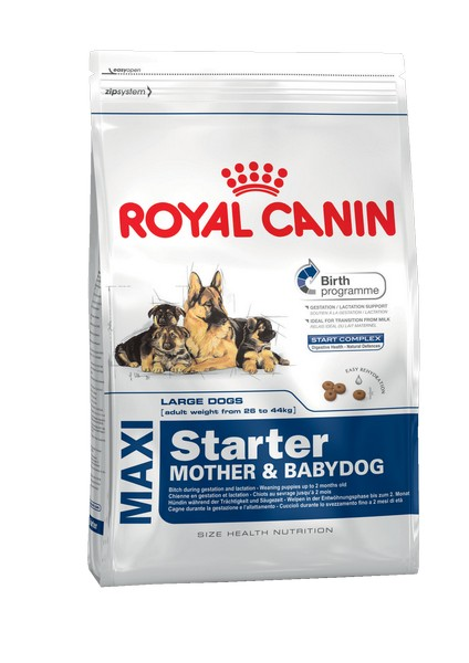 Royal Canin Maxi Starter / Сухой корм Роял Канин Макси Стартер для Щенков Крупных пород до 2 месяцев